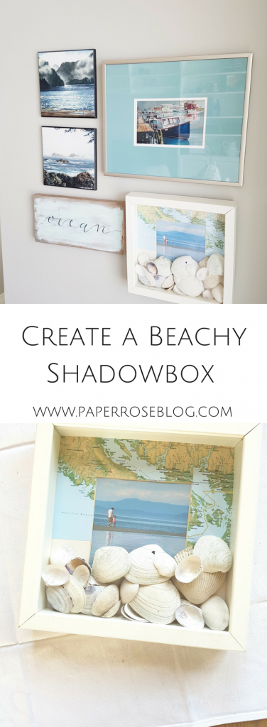 gallery-wall-display-shadowbox-shells-ocean-picture