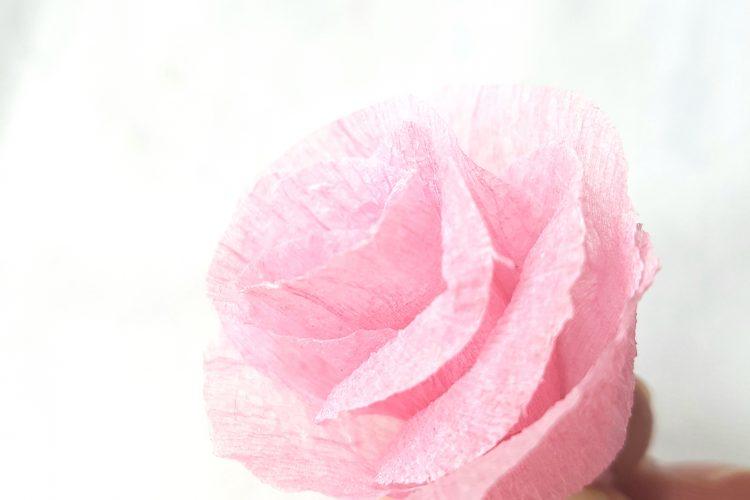 Creating Paper Rose