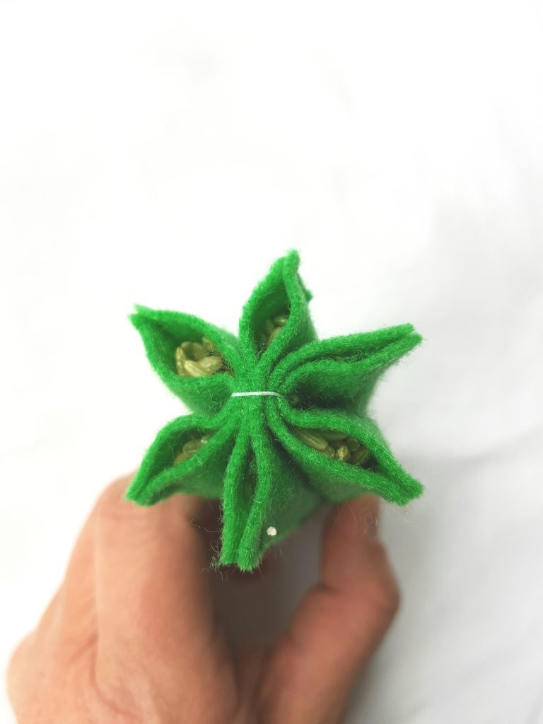 fill-felt-cactus-with-rice