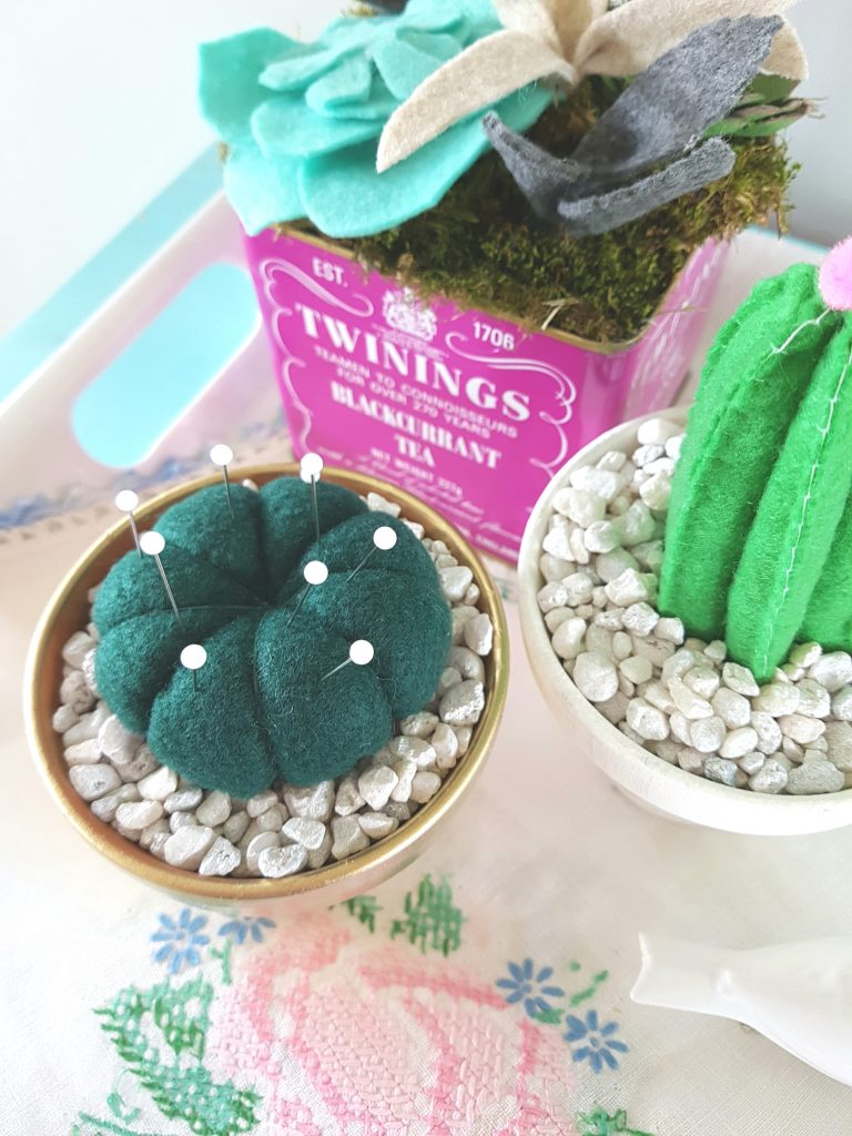 three-felt-cactus-plants
