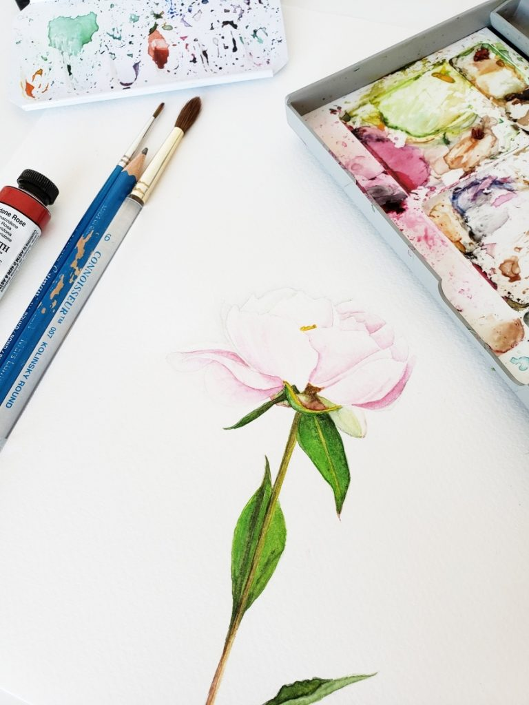 creating-watercolor-peony