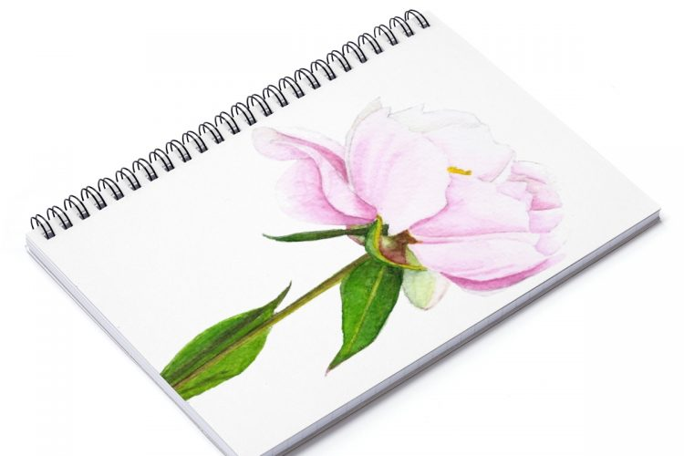 Pink Peony Journal