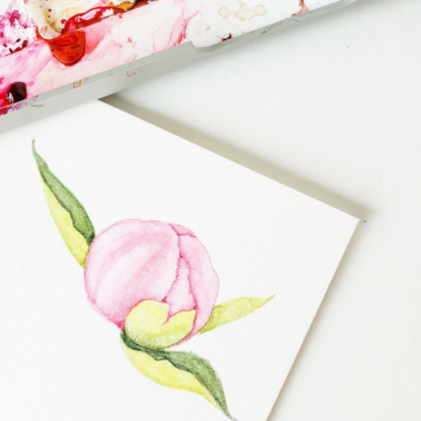 peony-bee-journal