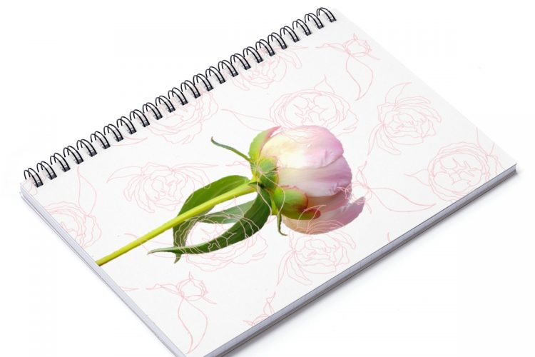 Peony Photo Art Journal